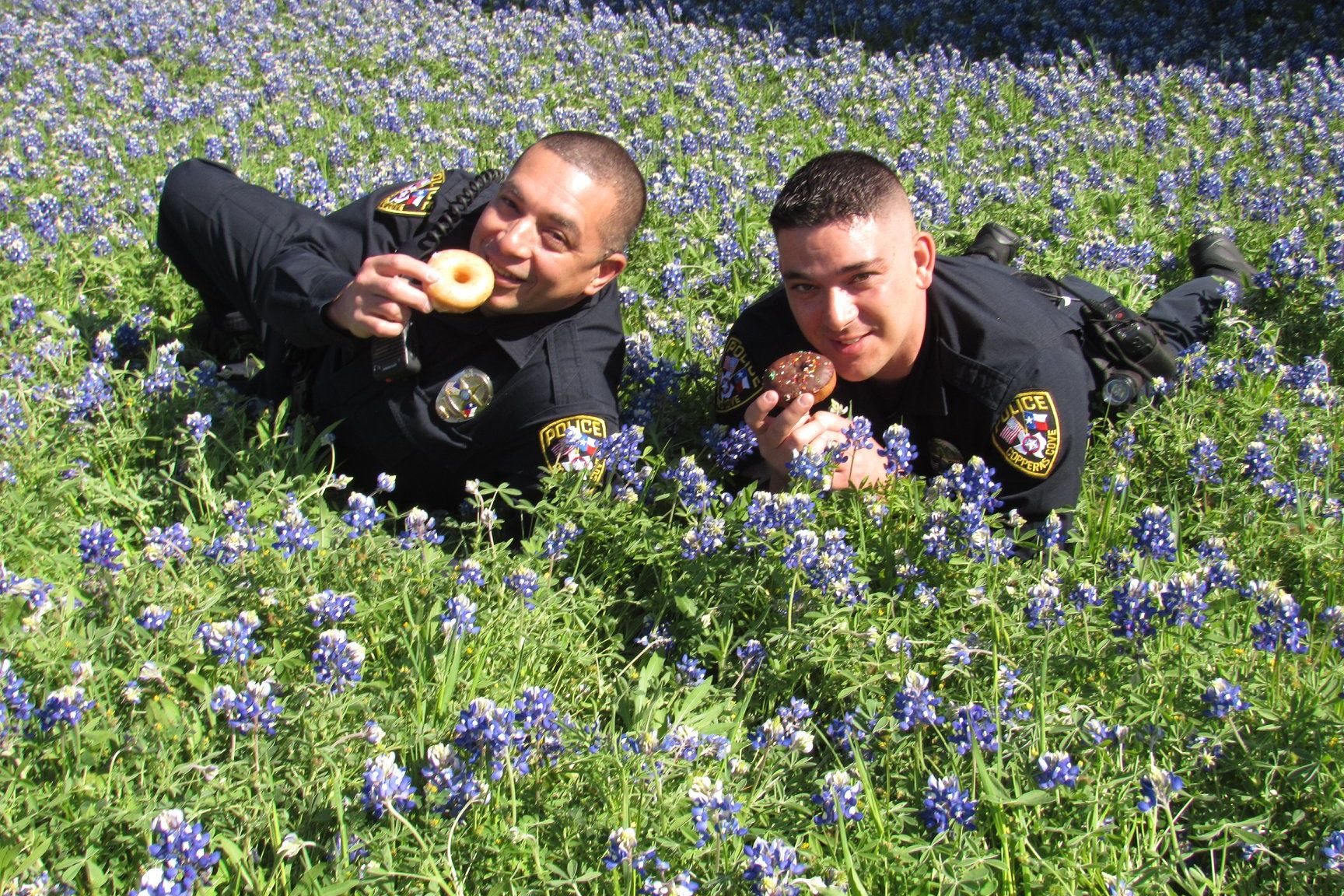 WATCH: Texas Police Officers Pose for Hilarious Bluebonnet Social Media Challenge