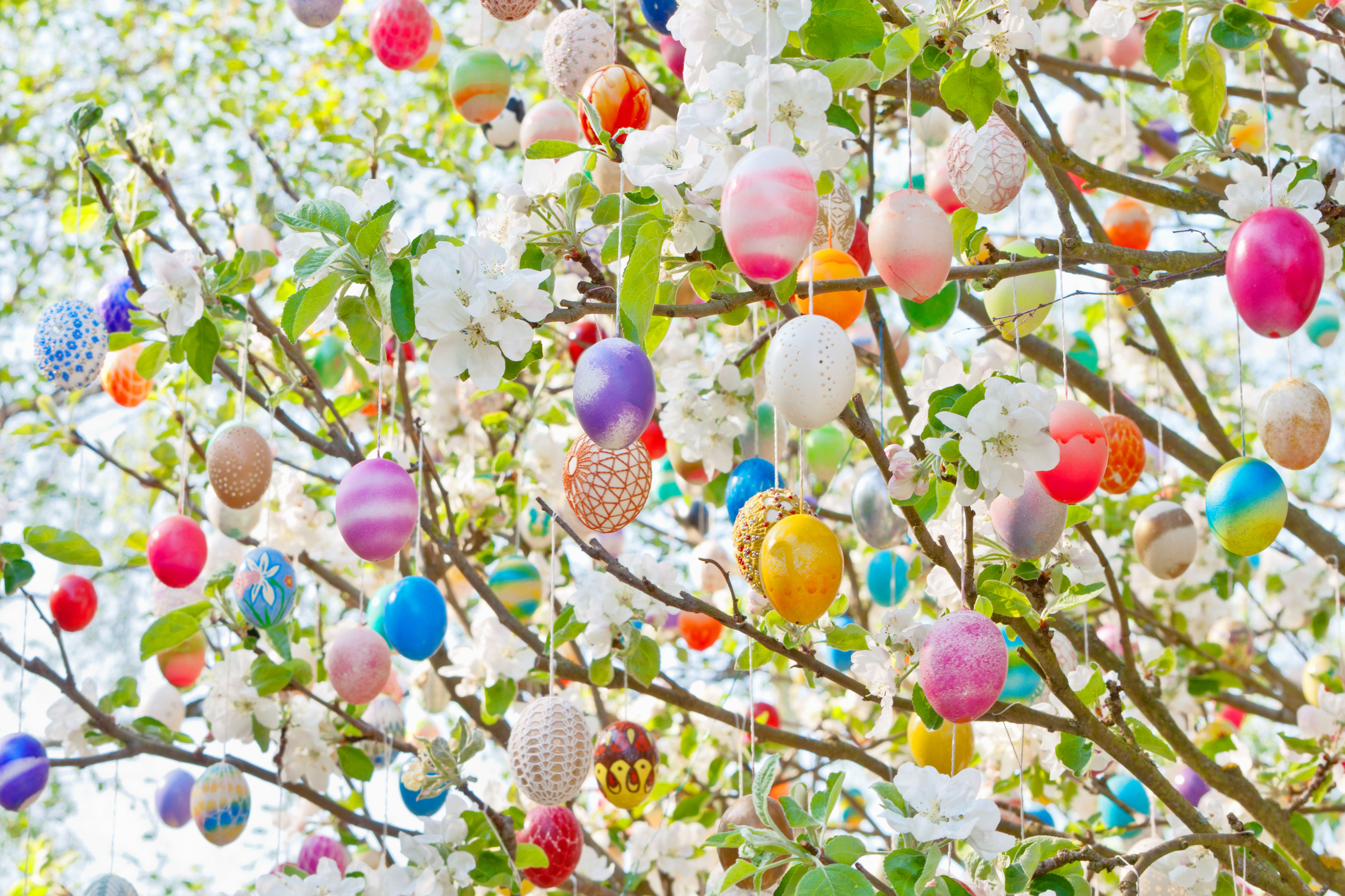 Where Did the Easter Tree Tradition Come From?