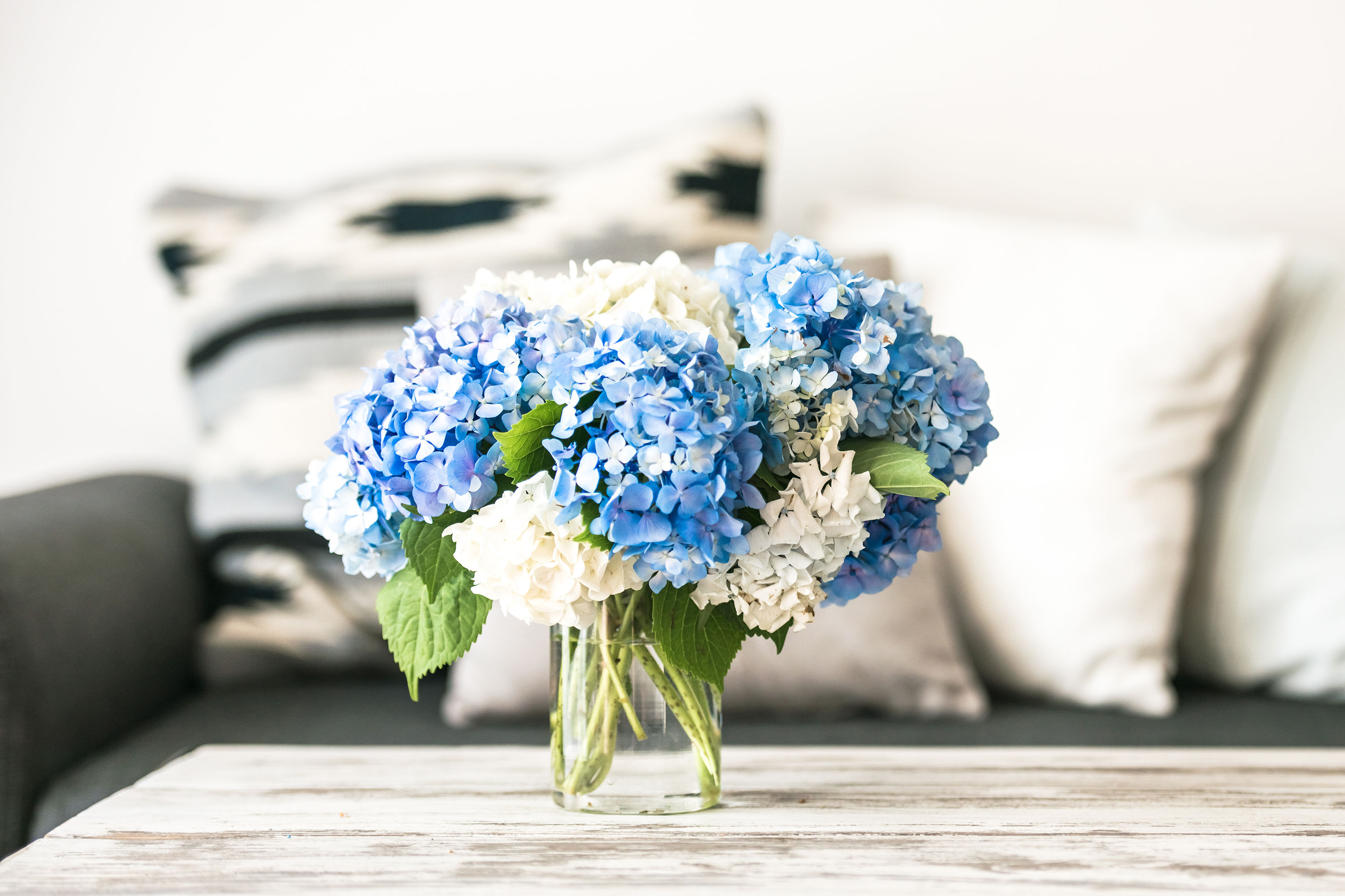 The One Mistake You're Making with Your Cut Hydrangeas