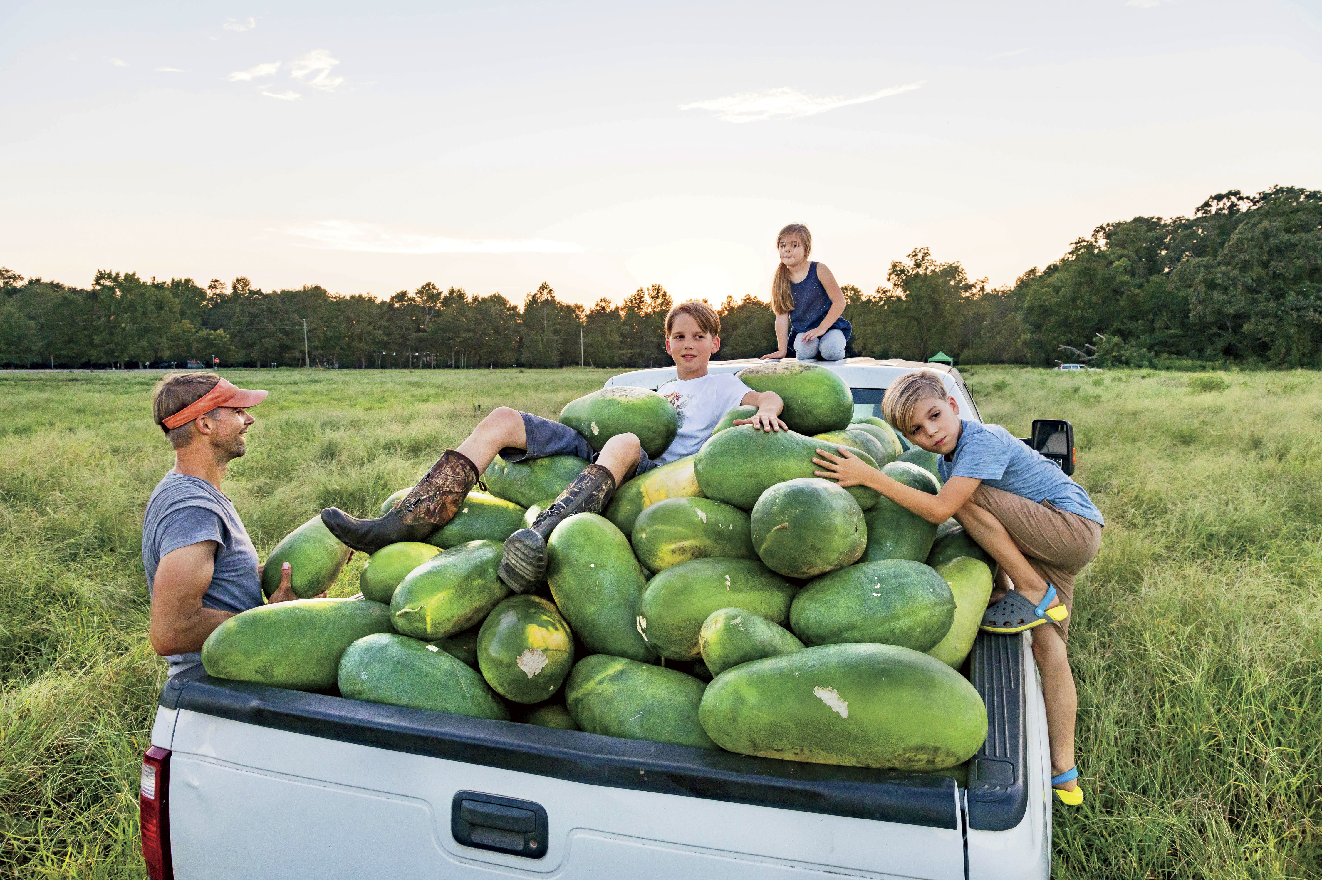 The Story Behind the Sweetest Watermelon in the South