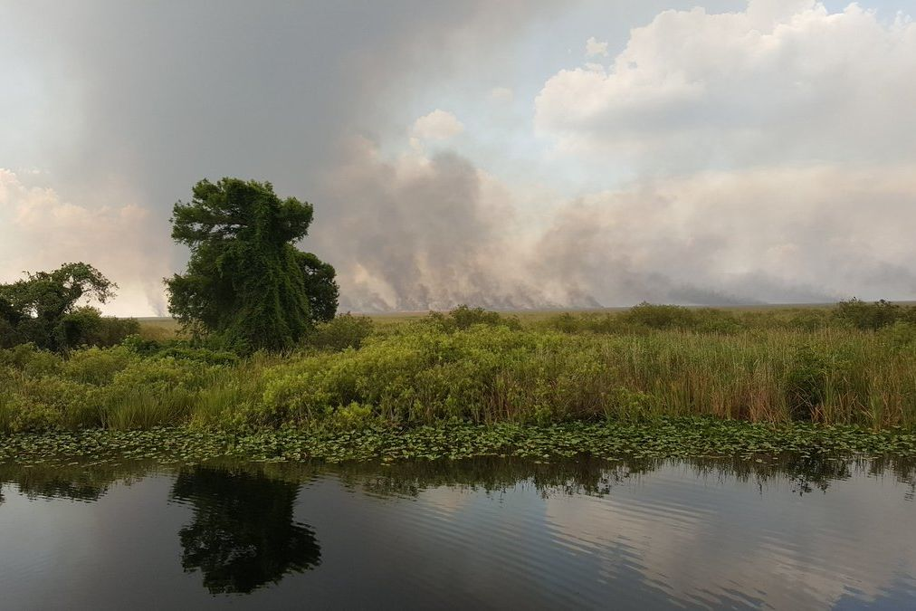 WATCH: Massive Wildfire Swallows up Portion of Florida Everglades
