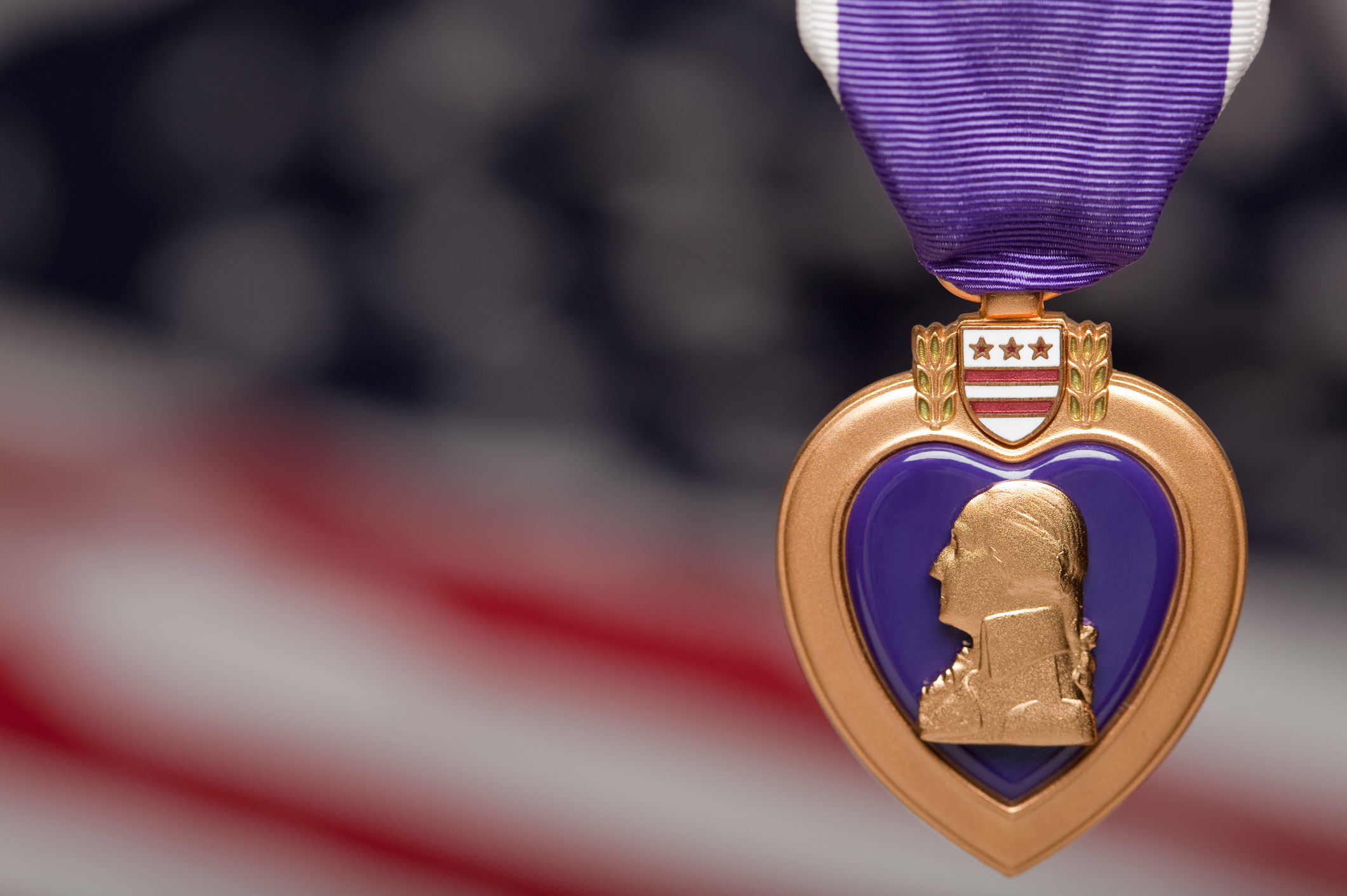 How A North Carolina Python Won A Purple Heart