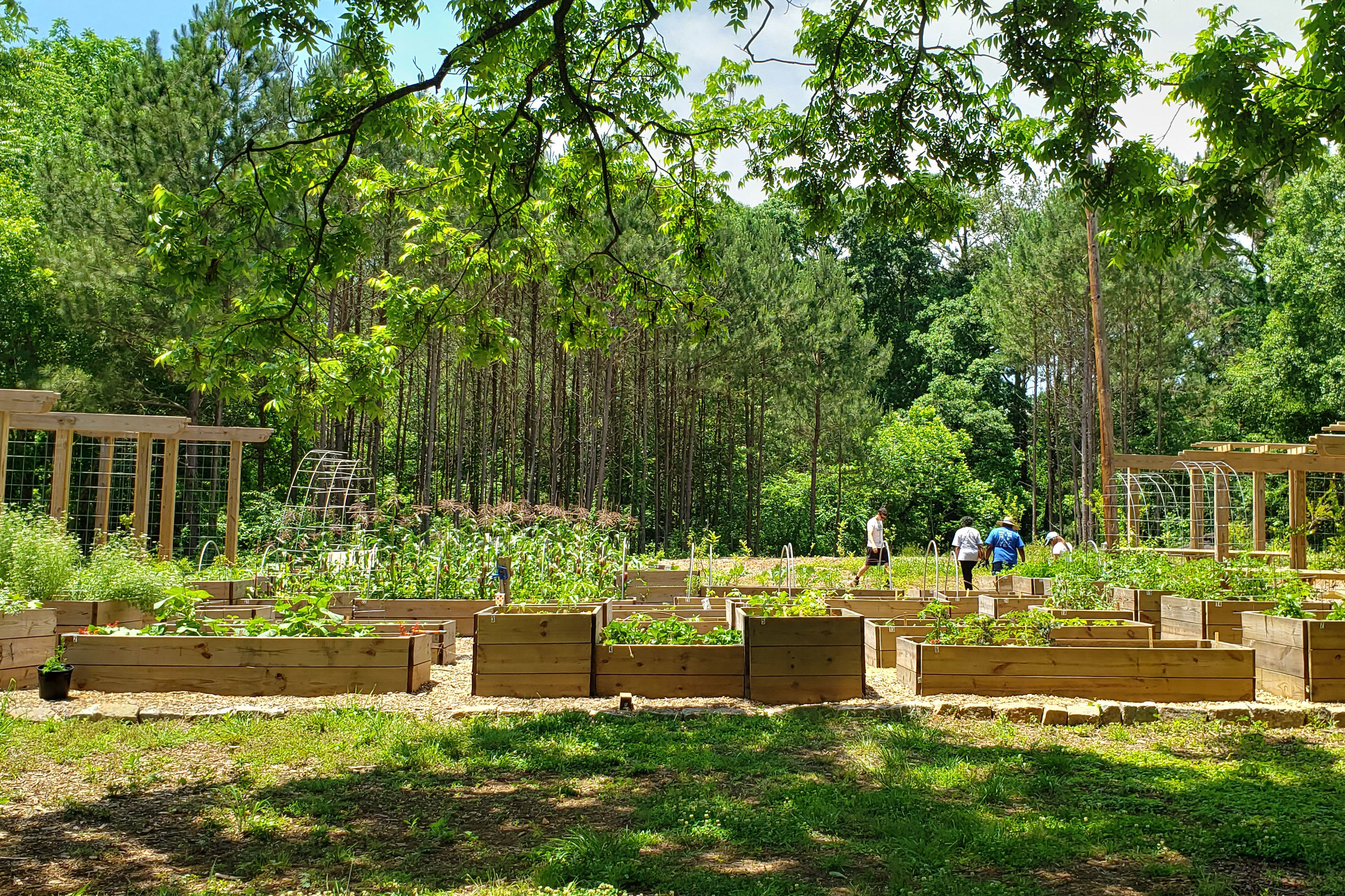 Atlanta Just Planted a Massive Edible Garden