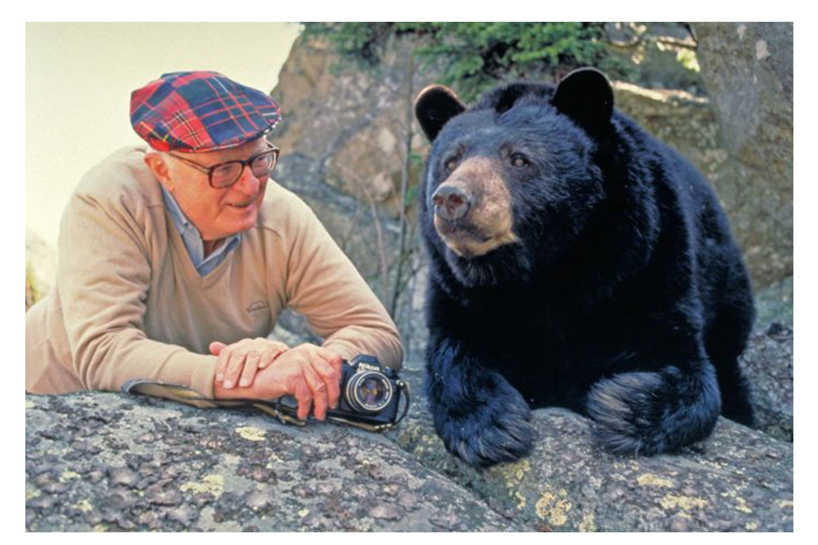 The Story Behind Mildred the Bear of Grandfather Mountain