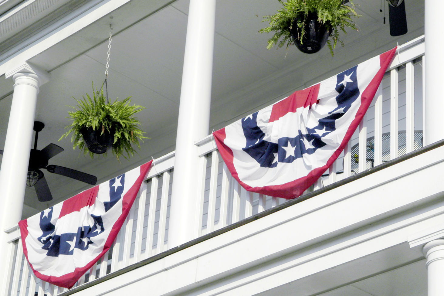Boston Ferns Are the South's Favorite Porch Plants