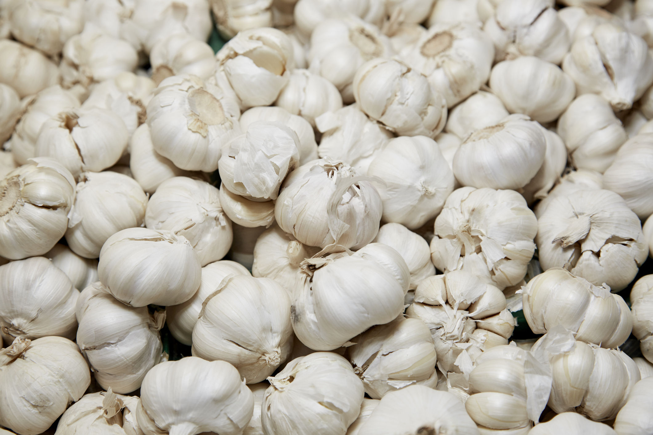WATCH: Are You Eating Toxic Foreign Garlic?