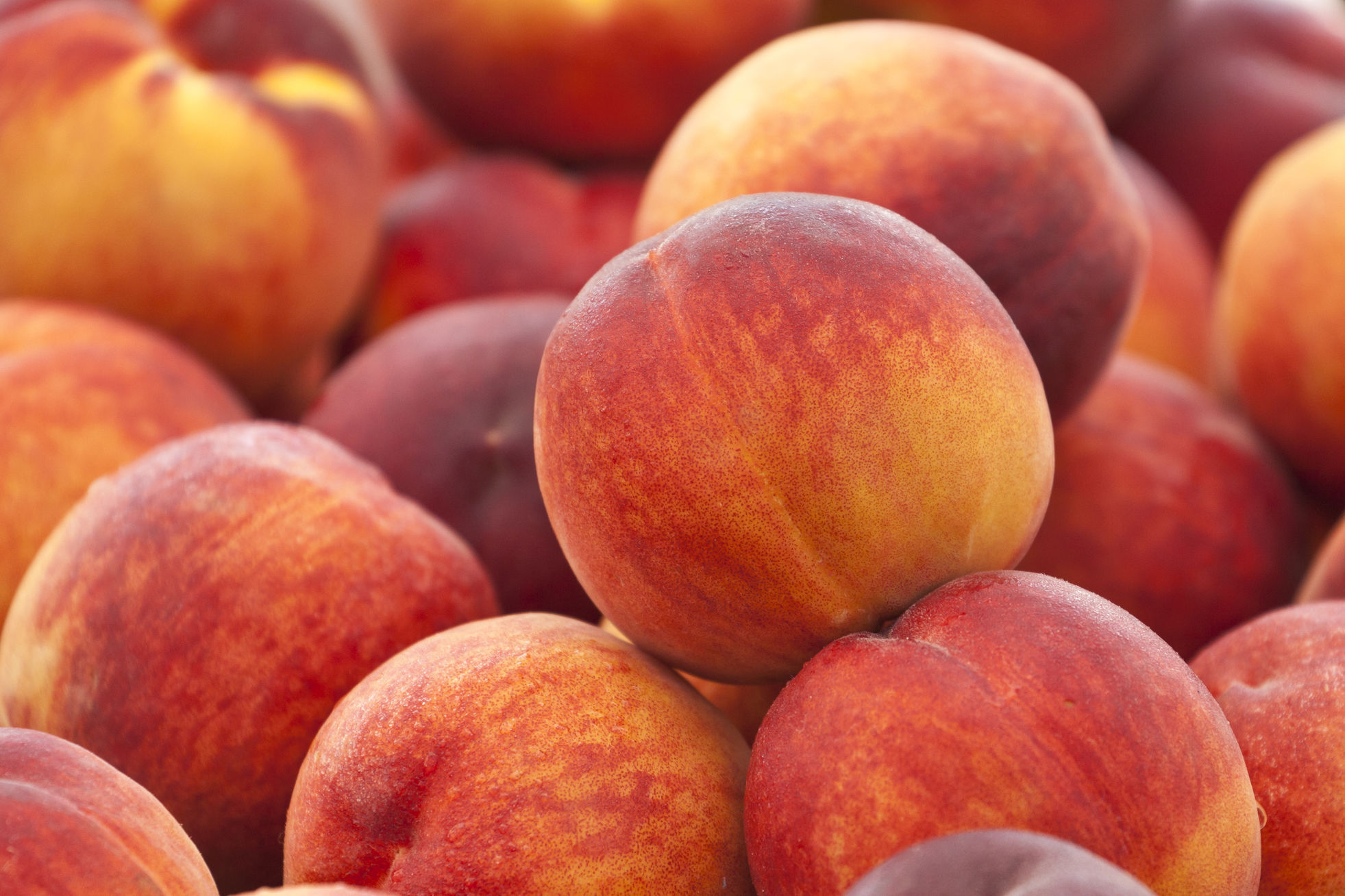 Southern-Favorite Peaches Could Have Cancer-Fighting Benefits, Study Suggests