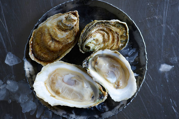 Your Guide to the South's Best Farmed Oysters