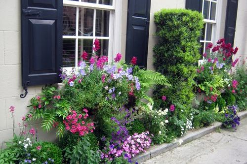 Charleston's Wonderful Window Boxes