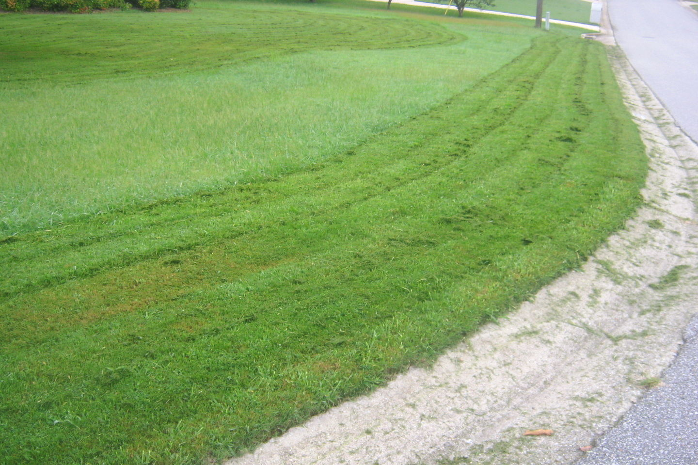 Question of the Week: Why Bother With A Mulching Mower?