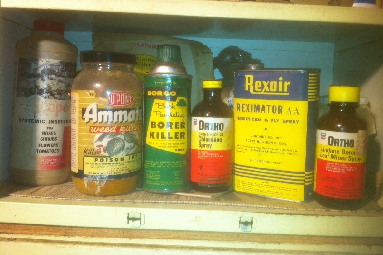 Welcome to Dad's Toxic Waste Museum!
