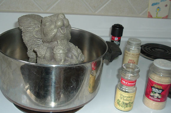 Cooking with Rocky -- A Rodent Recipe Thanksgiving Feast!