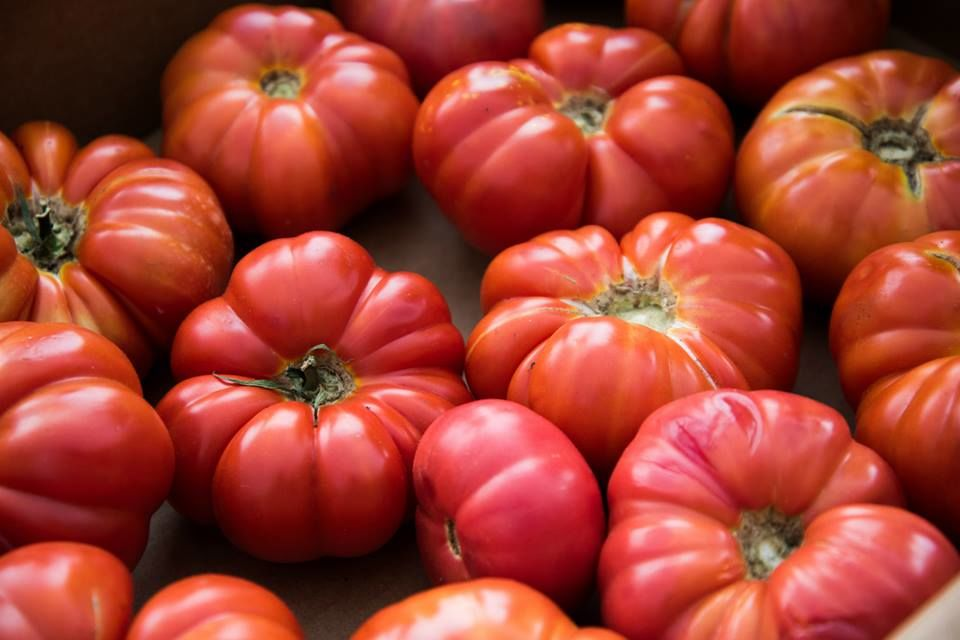 Tomatoes, Peanuts and Okra: Festivals that Celebrate Summer's Bounty