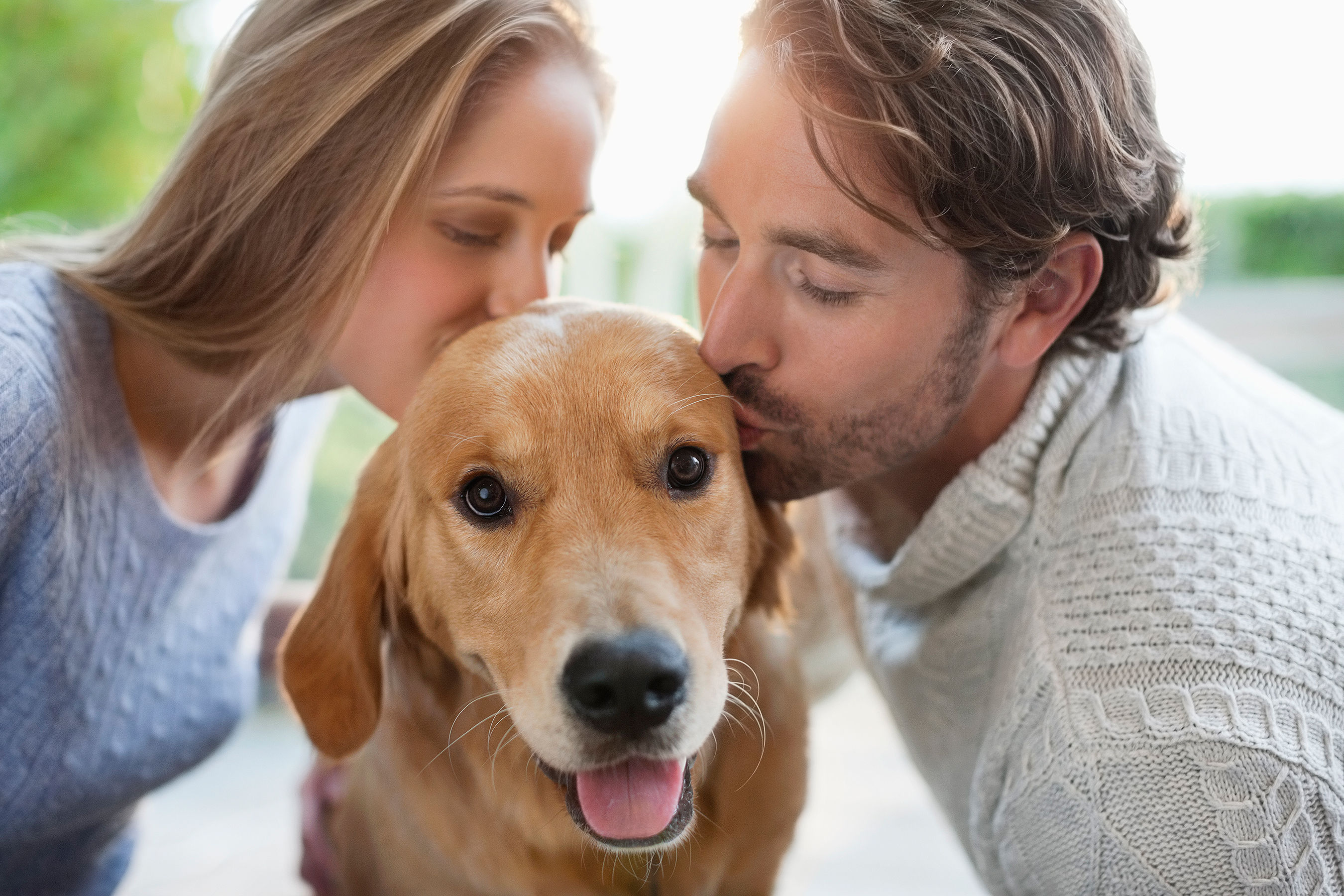 Survey Finds Over Half of Dog Owners Kiss Their Pooches More Than Their Partners