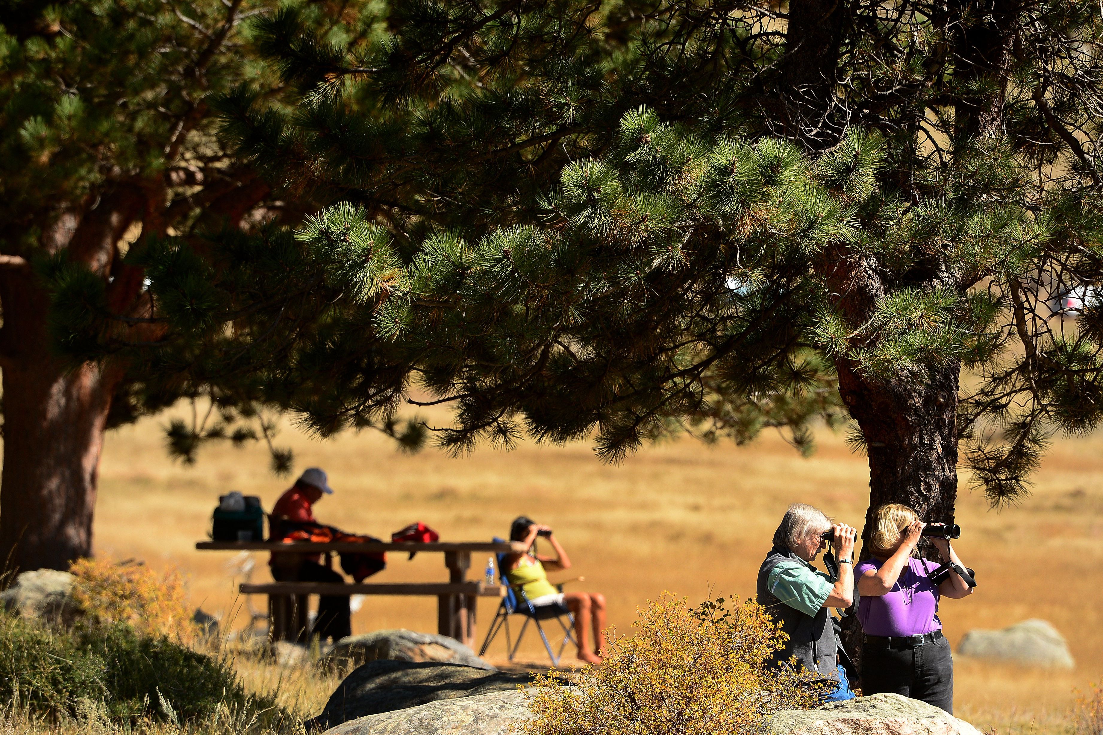 Seniors Can Get Lifetime Access to National Parks For Just $10. But Not For Long