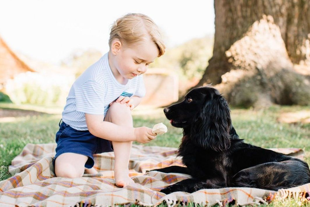 Kate and William Got Their Dog for the Sweetest Reason