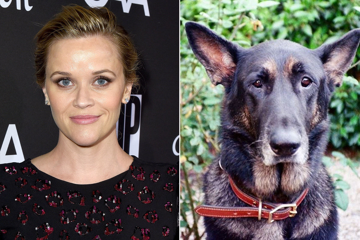 Reese Witherspoon's 'Sweet' Dog Nash Dies, Actress Hopes He's In 'Dog Heaven'