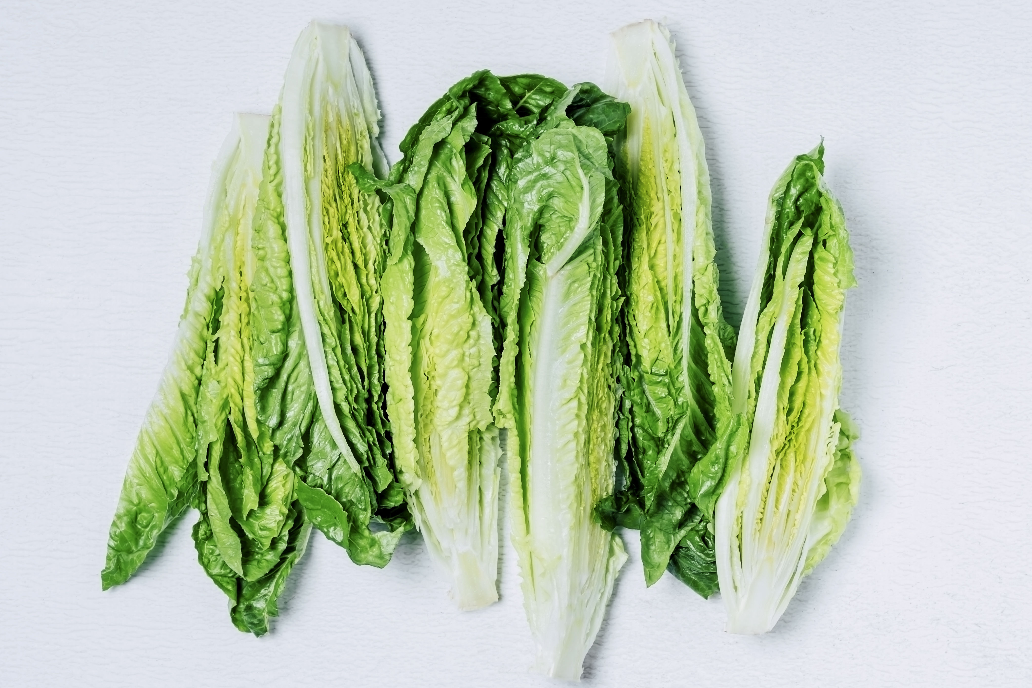 Romaine Lettuce Is the Likely Source of a Dangerous E. Coli Outbreak