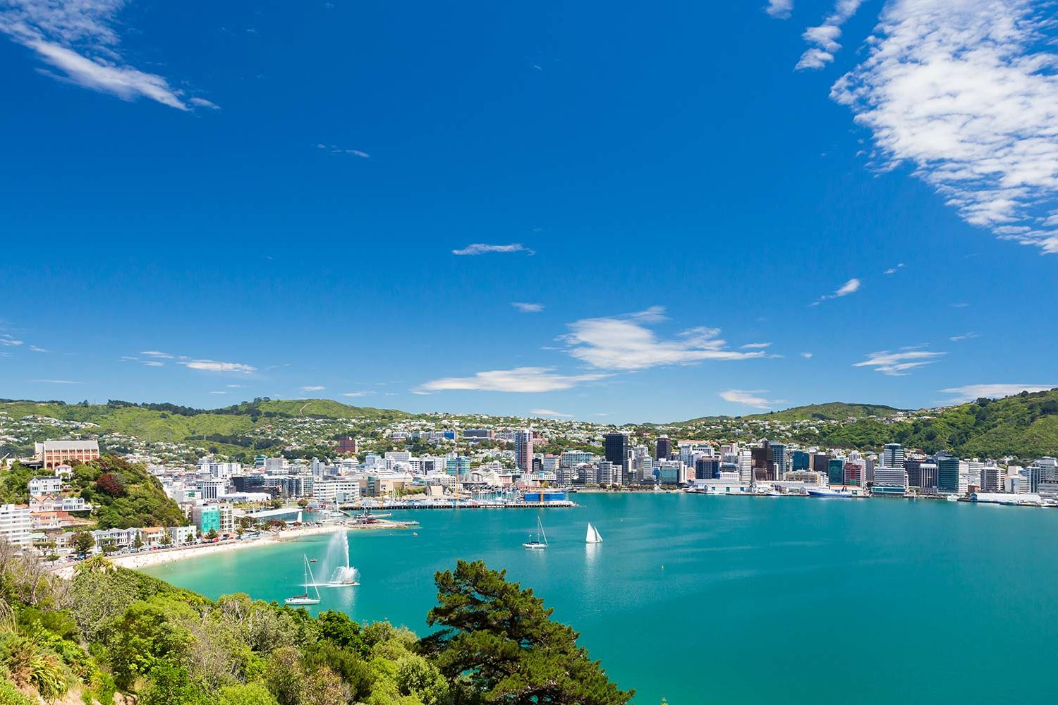 New Zealand Will Give You a Free Trip If You Agree to a Job Interview