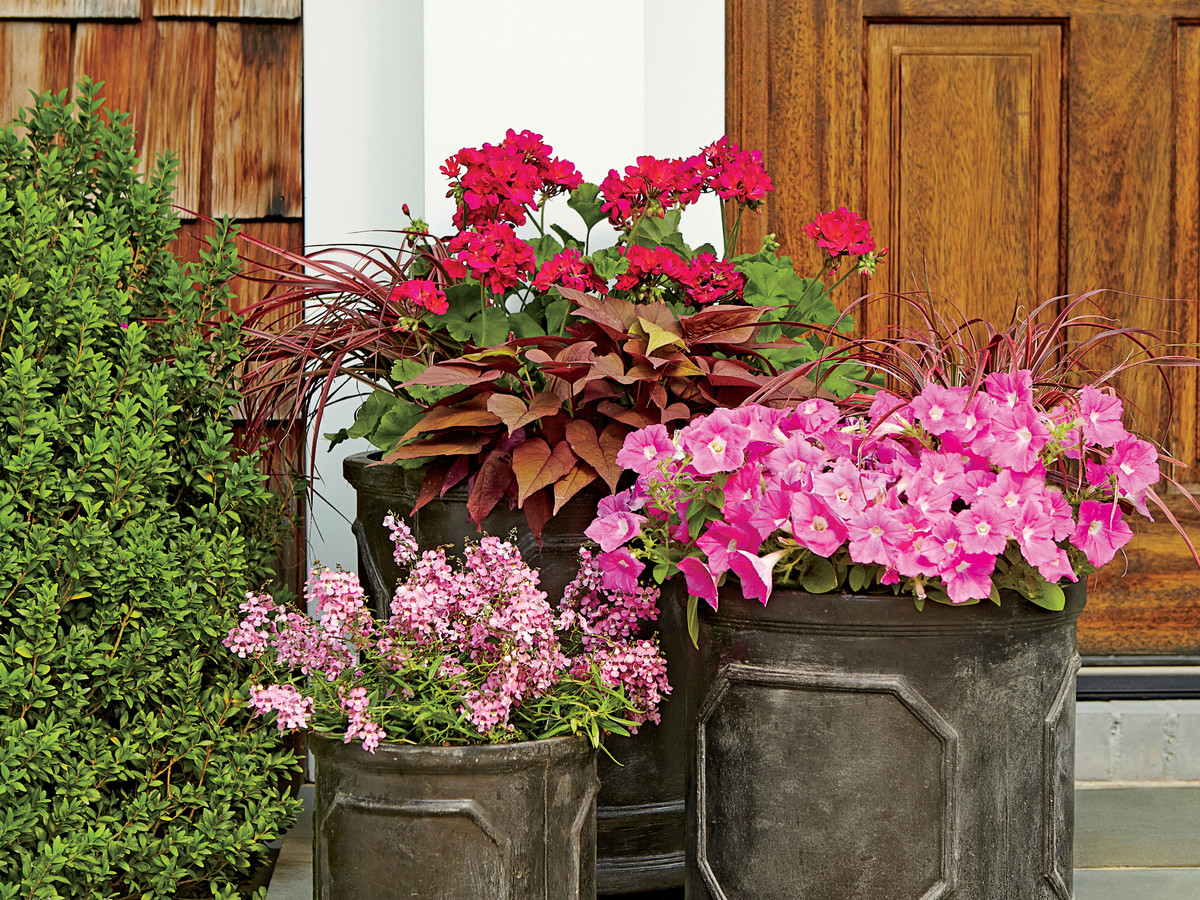 Earthy Pink Planters