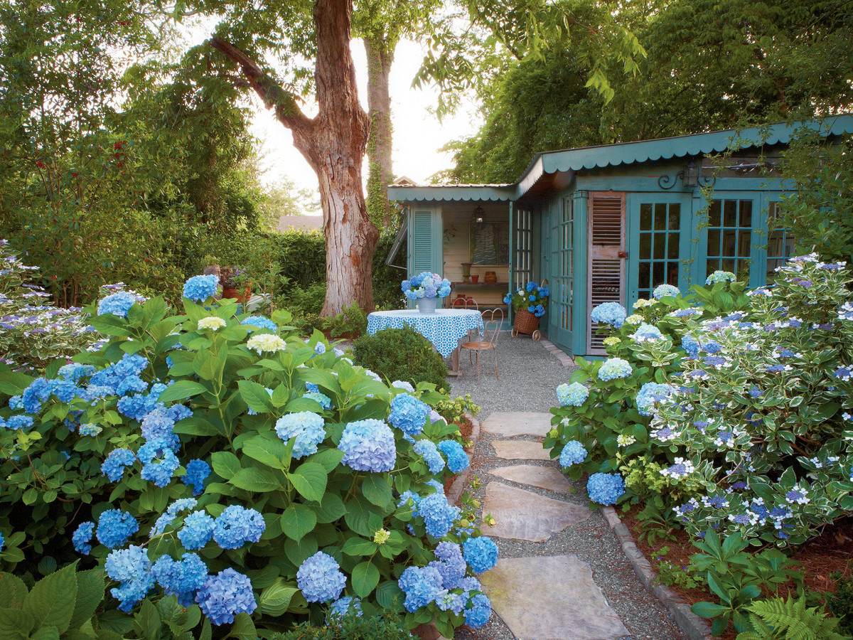 Attirant 17 Dreamy Hydrangea Gardens That Are Giving Us Major Inspiration   Southern  Living