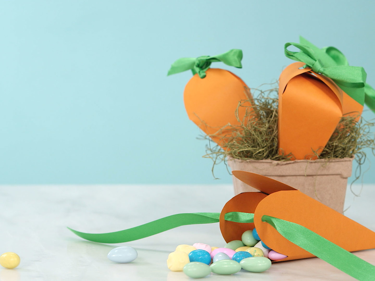 Carrot Treat Bags Image