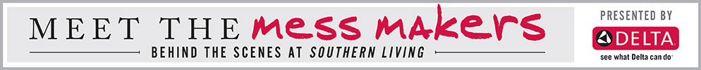 Delta Mess Makers Banner