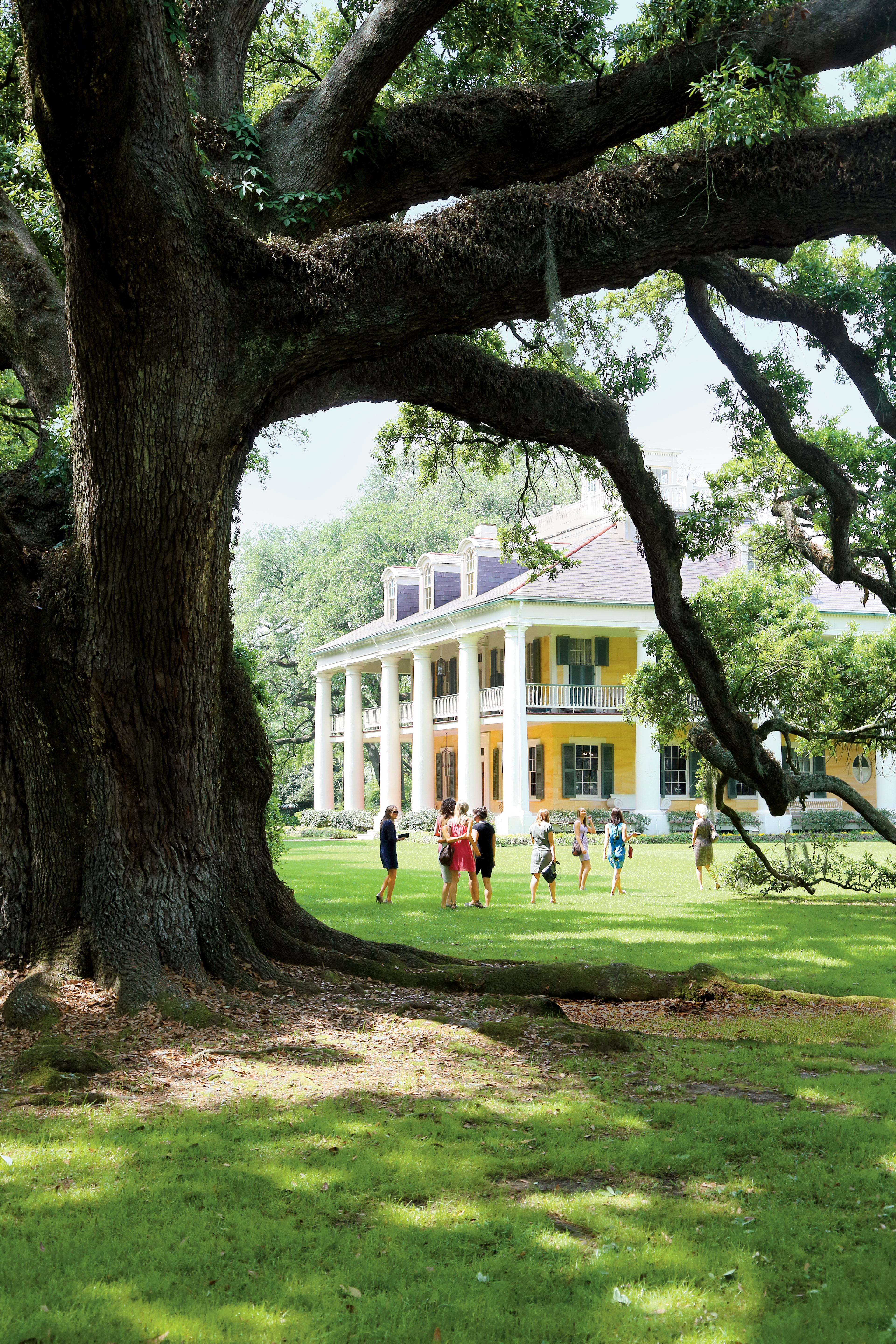 100 southern living home plans with photos southern living