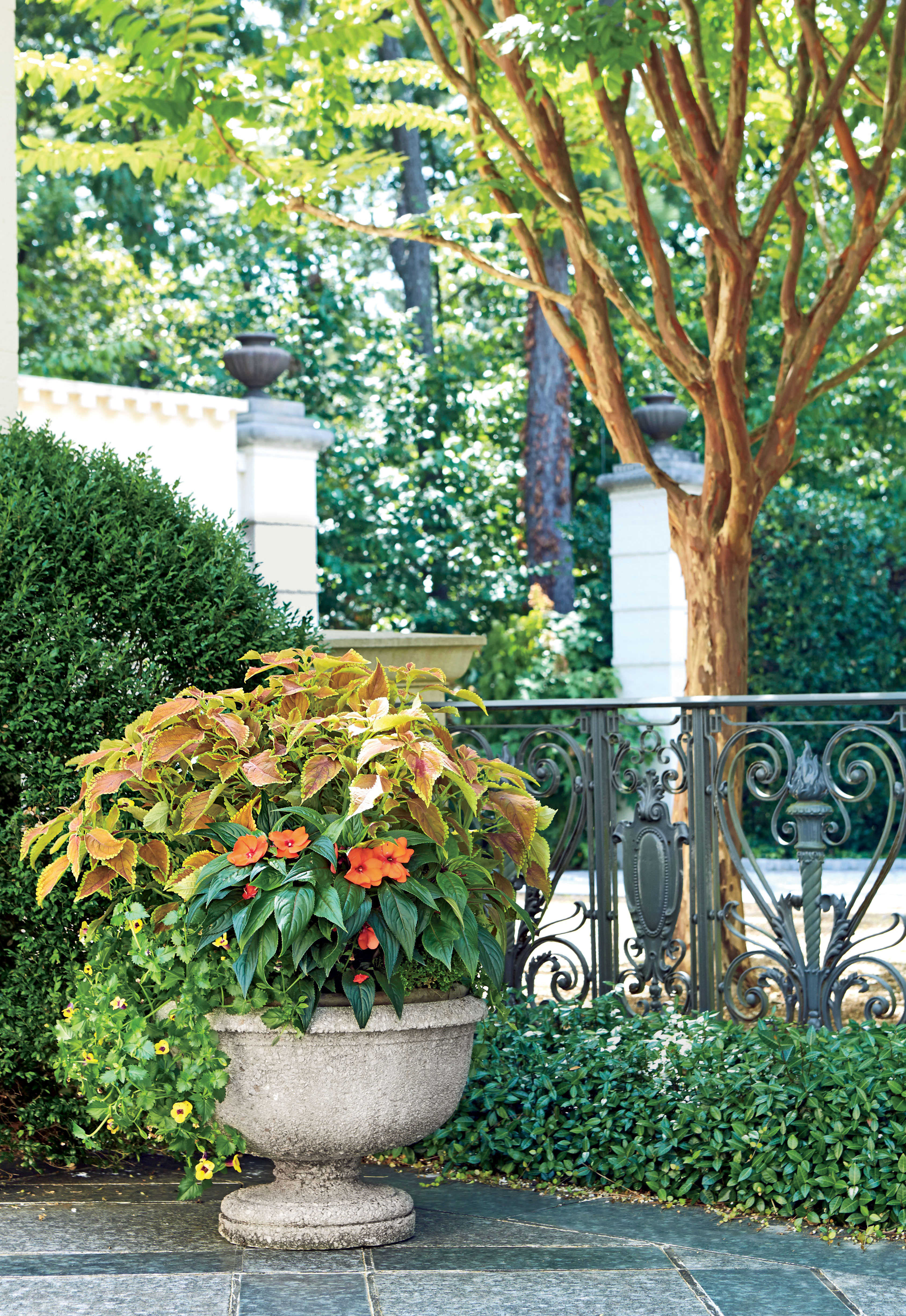 spectacular container gardening ideas southern living - Container Garden Design Ideas