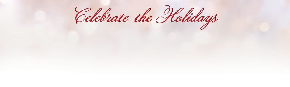 1112 Christmas Franchise Page Banner