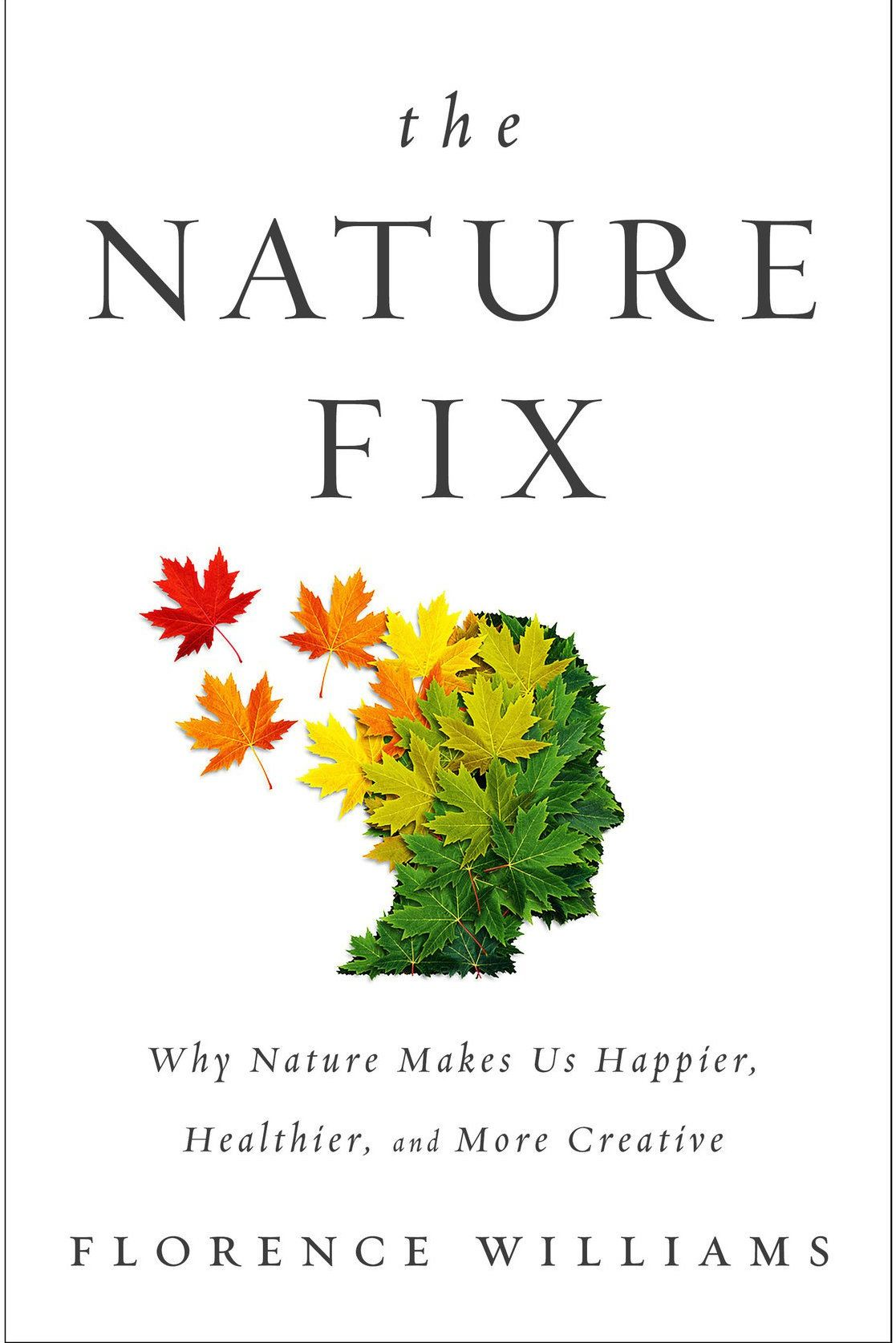 How Just 15 Minutes in Nature Can Make You Happier