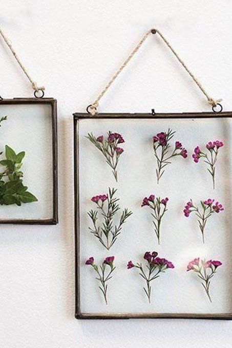 The Plant Trend That's Taking Over Pinterest—And It's Impossible to Get Wrong