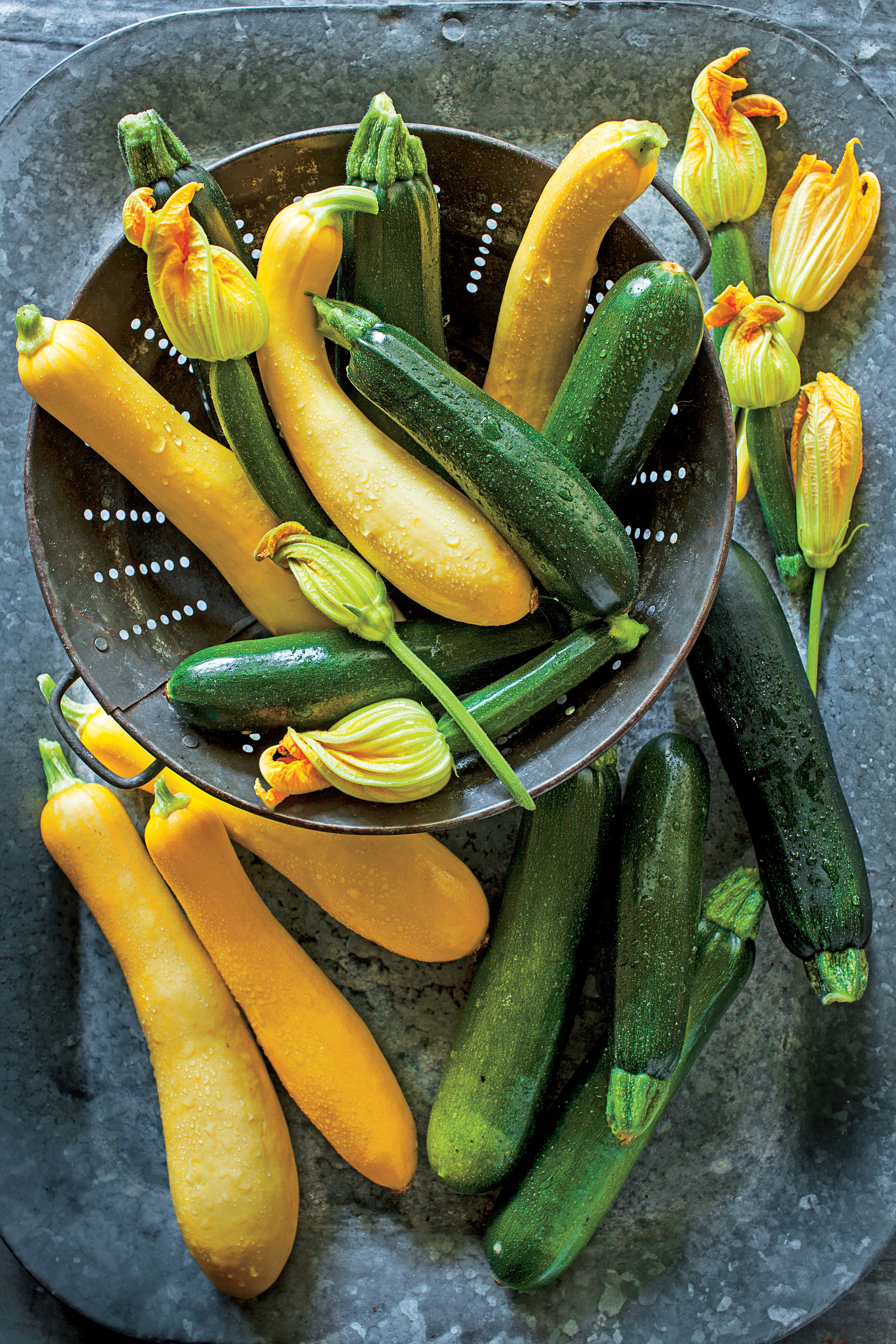 Get Growing! Delicious Summer Squash
