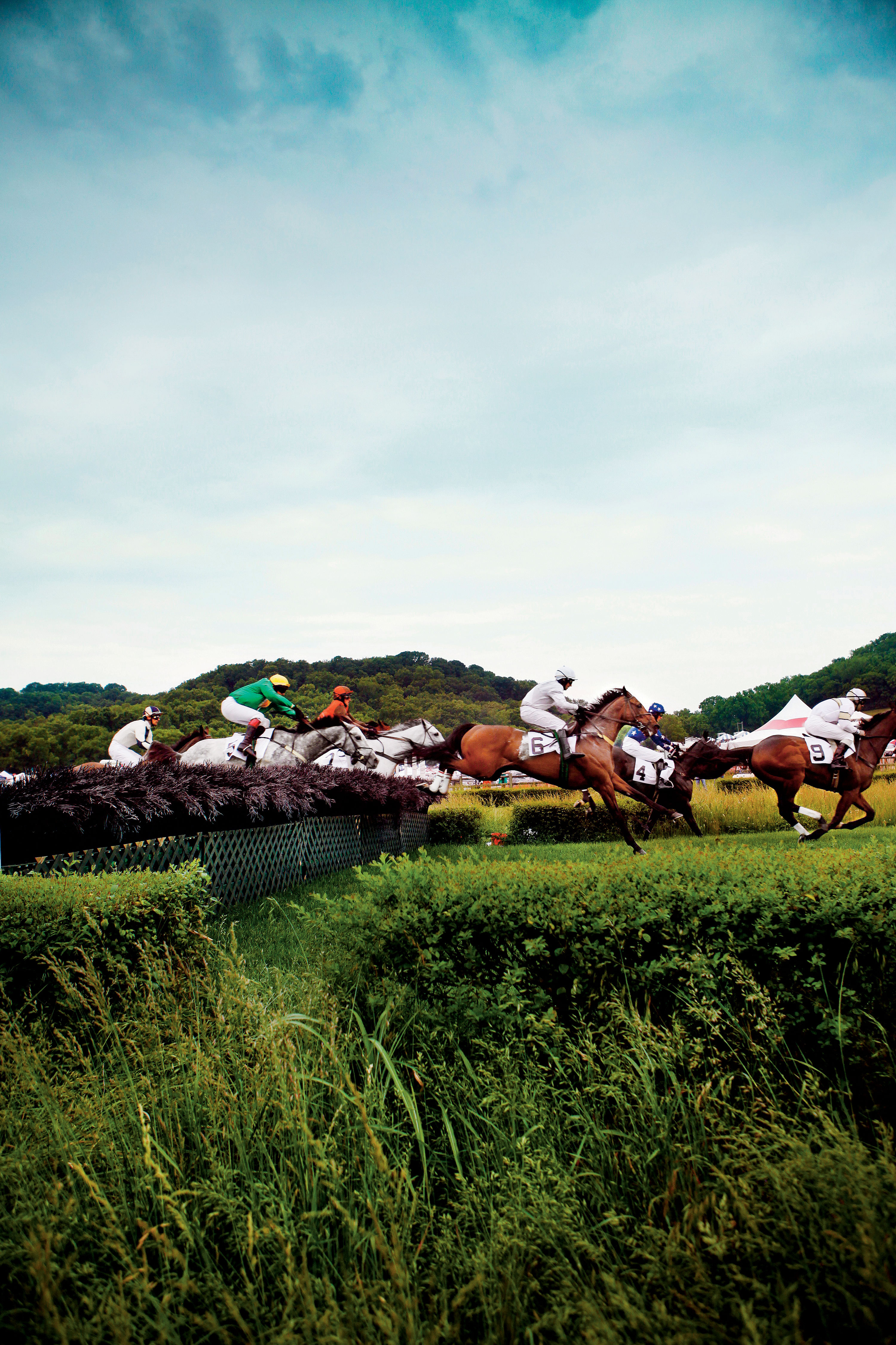 The Complete Guide to the Iroquois Steeplechase
