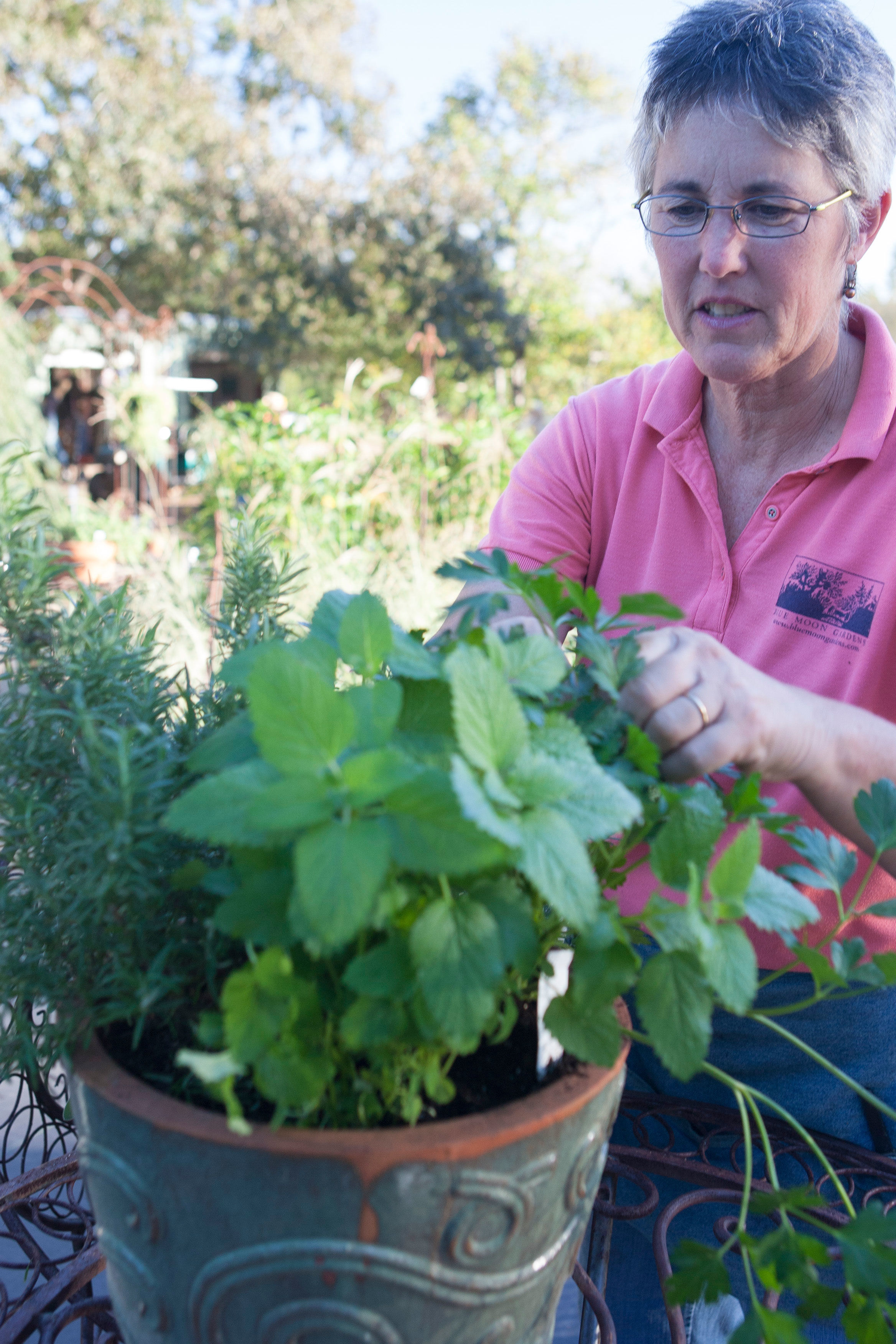 Container Gardening - For the Kitchen