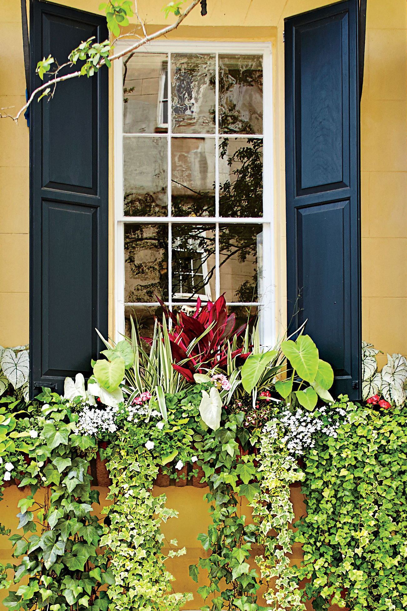 How to Give Your Home Major Southern Charm With Easy Window Boxes