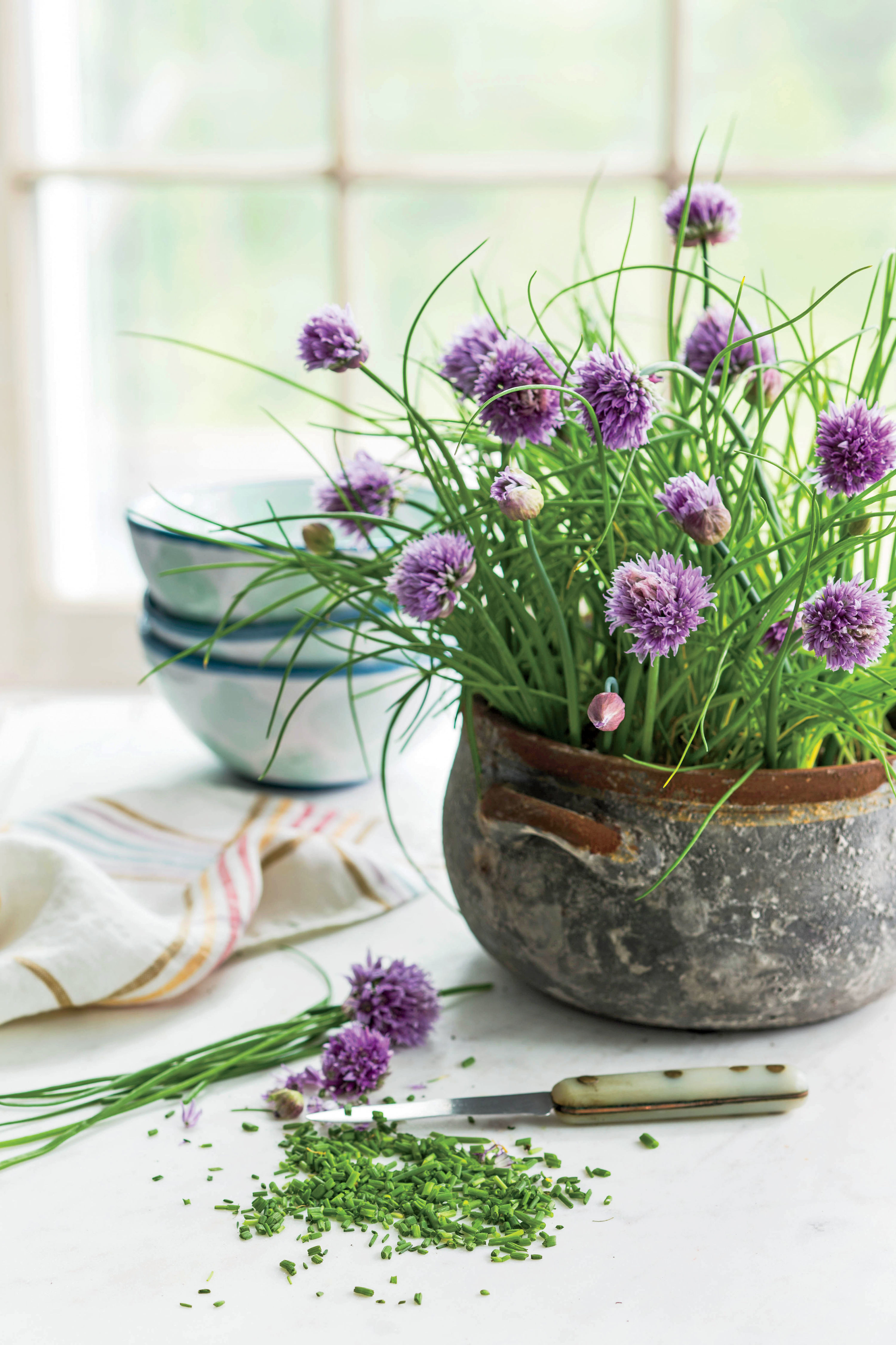 Here's Why You Should Grow Chives