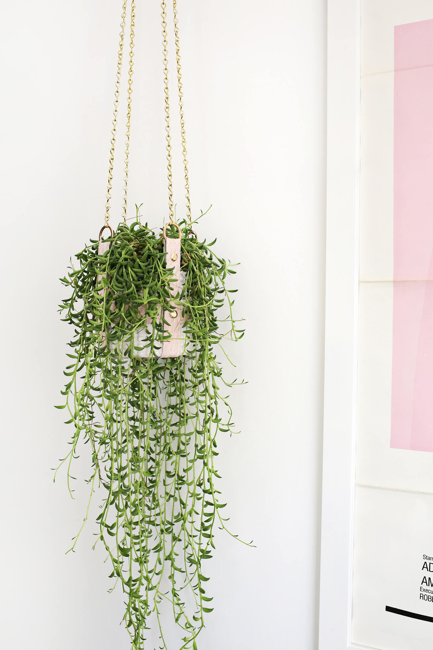 7 Diy Hanging Planters For That Empty Corner You Don T Know What To Do With