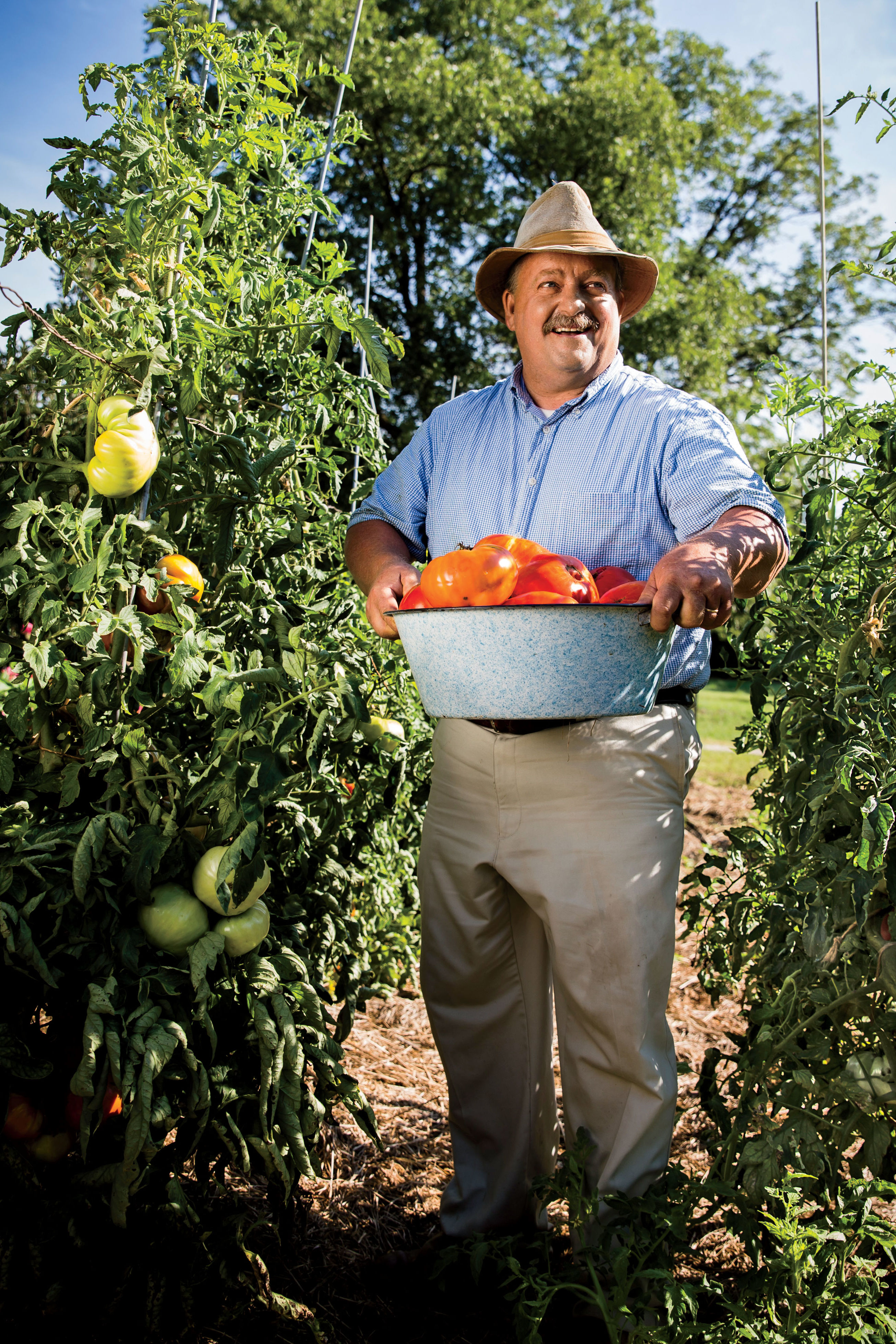 Meet the South's Tomato Man