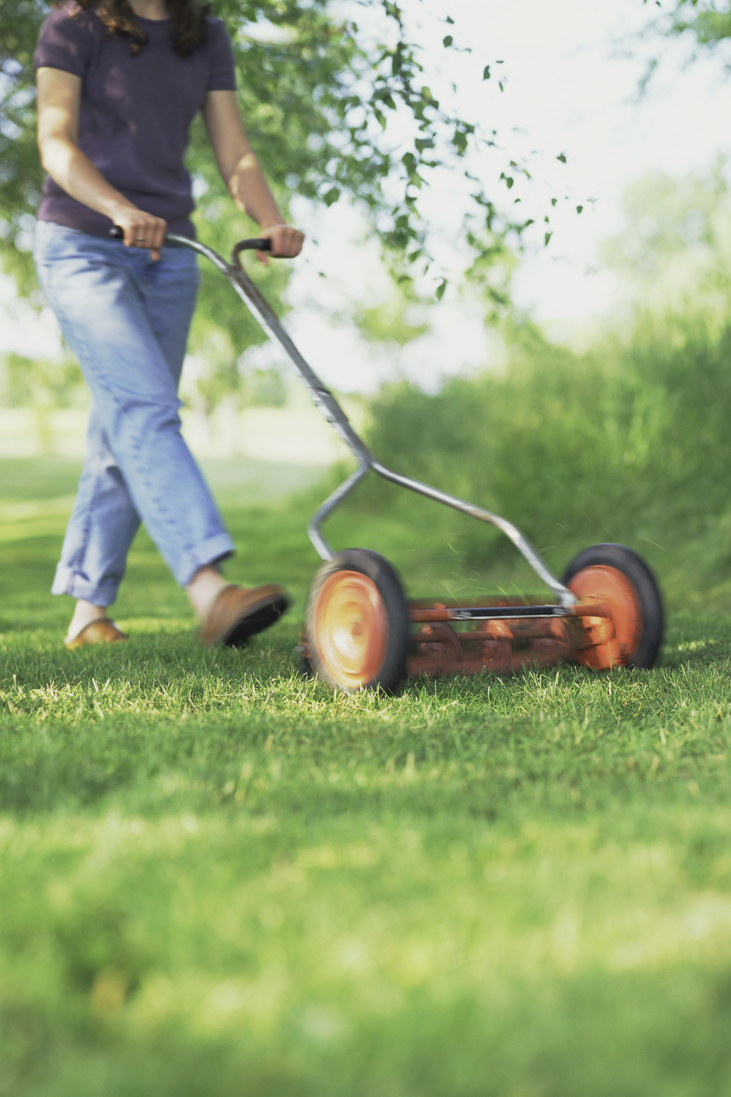 How Often Should You Really Be Mowing Your Lawn?