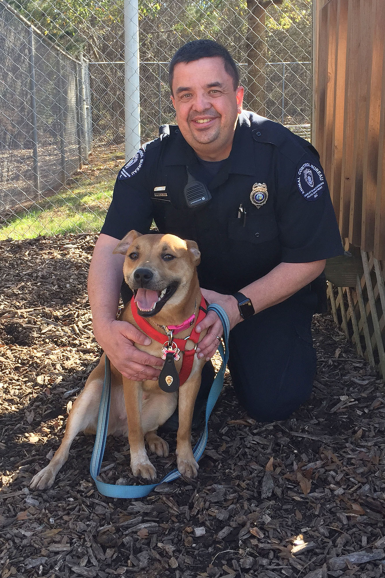Adorable Dog Follows Animal Control Officers for Help – and Lands a New Job