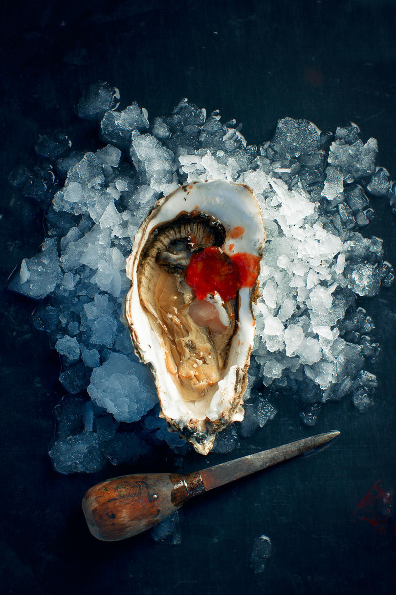 2-4 The South Is Your Oyster