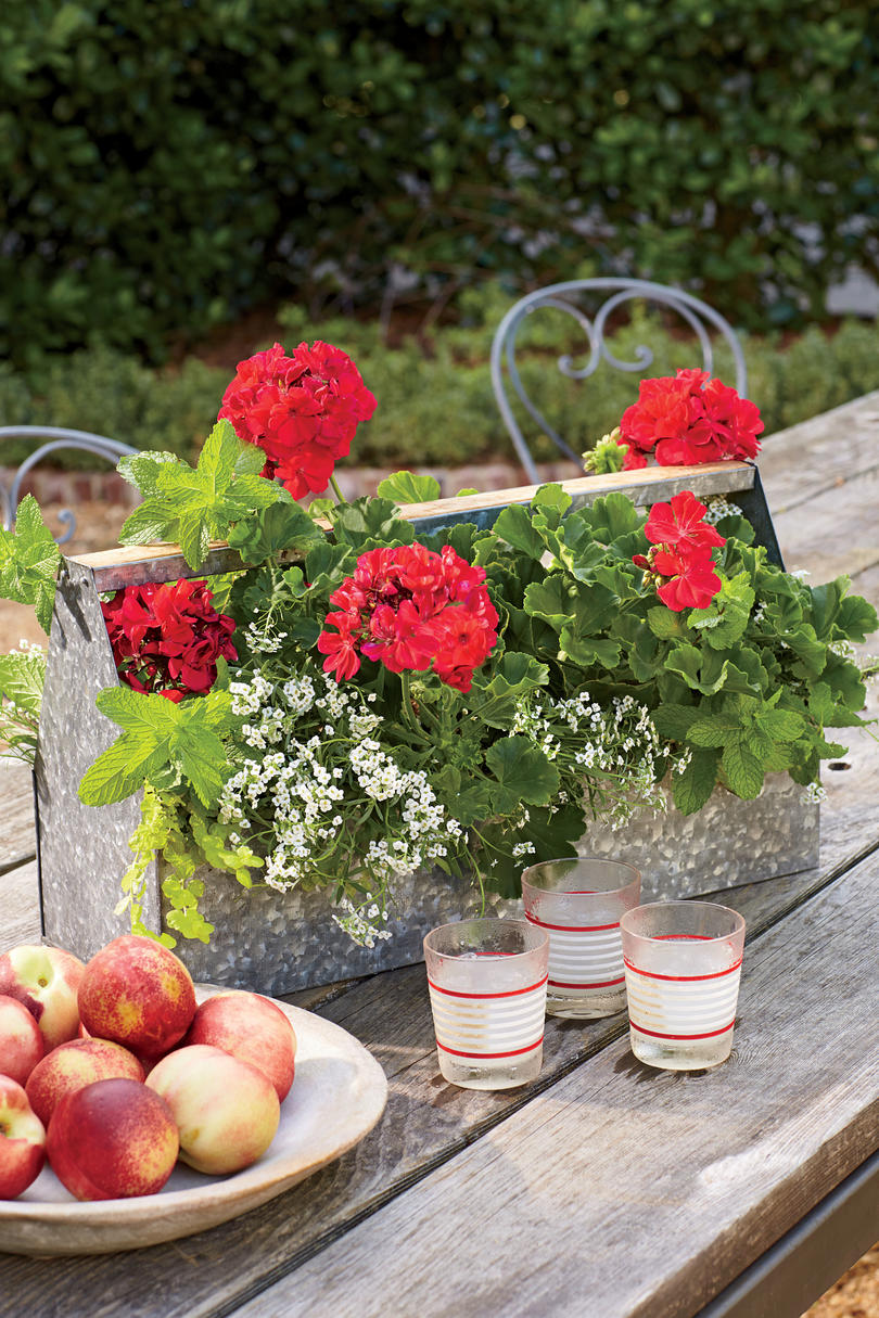Rustic Tabletop Container