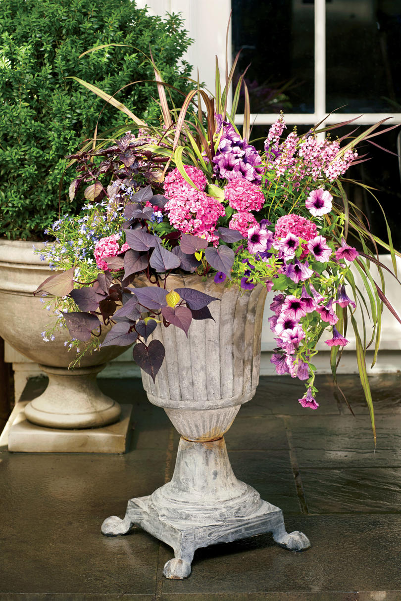 Spectacular container gardening ideas southern living romantic freestanding container mightylinksfo