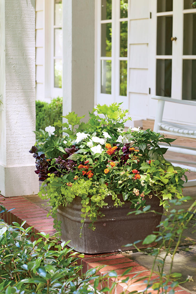 Spectacular container gardening ideas southern living rustic freestanding container mightylinksfo
