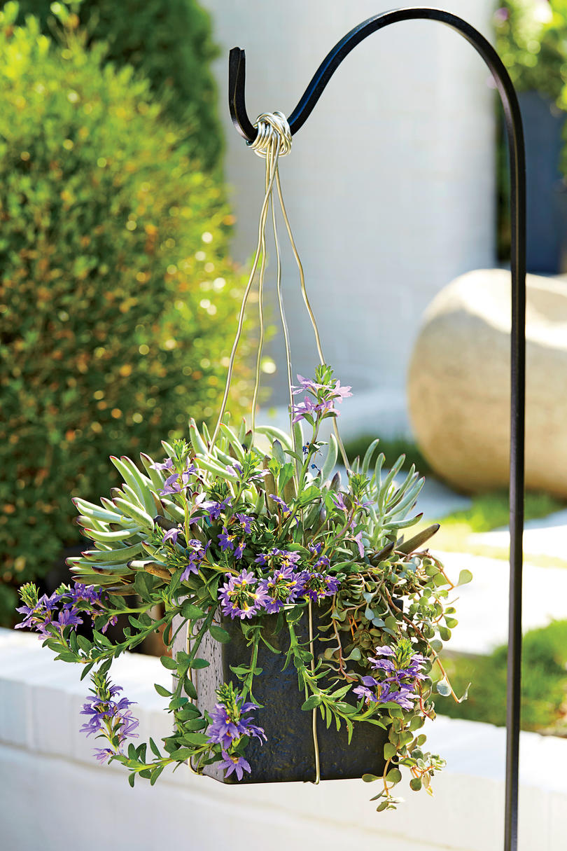 Modern Hanging Container