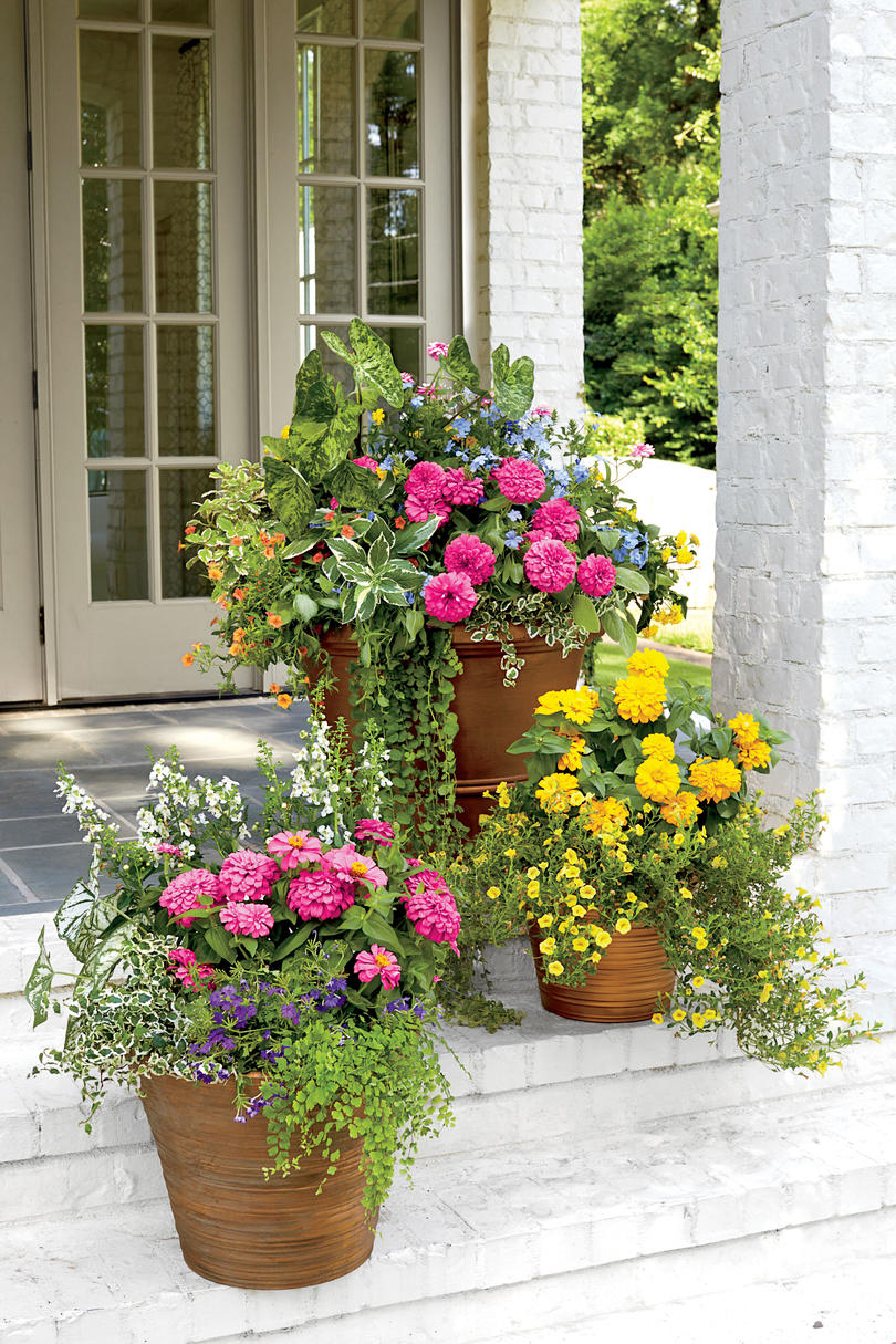 Spectacular container gardening ideas southern living for Container garden ideas