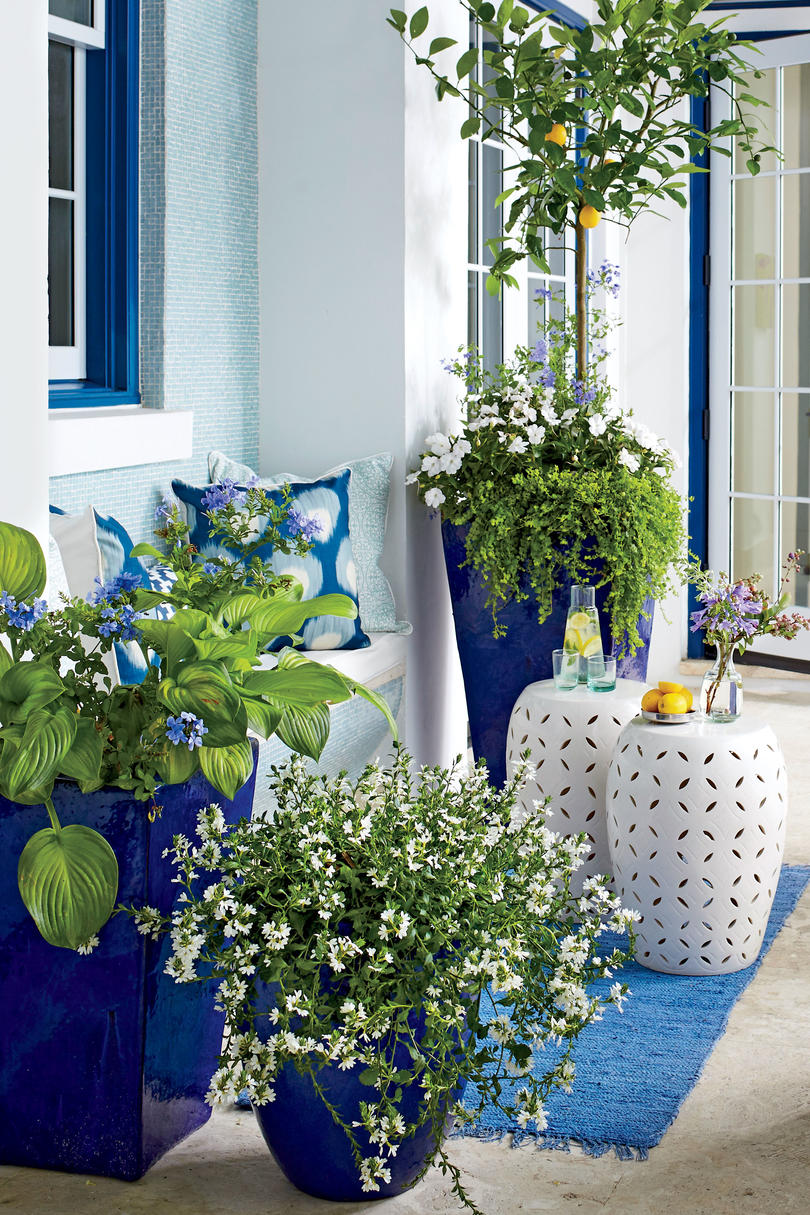 Brighten Up with Blue and White