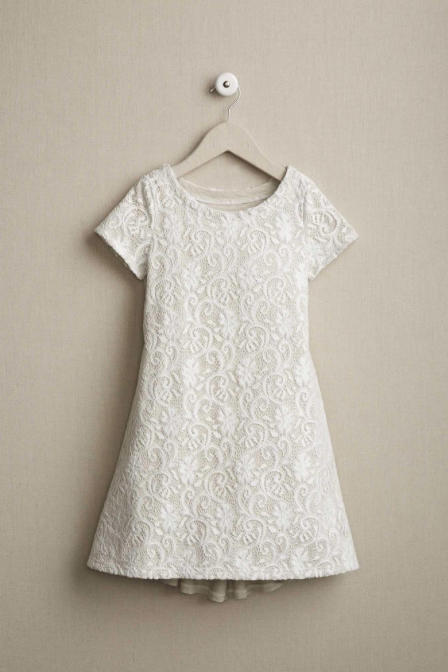 Knit Lace Dress