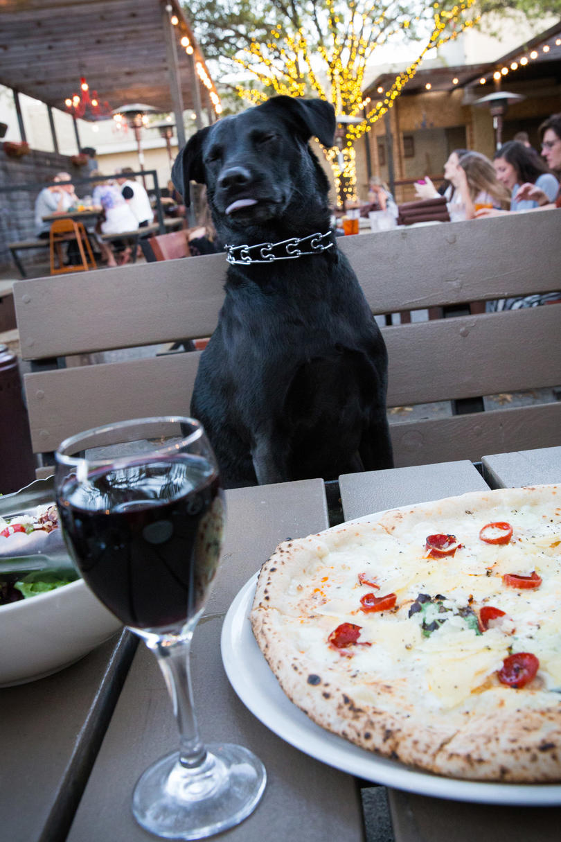 Here Are the Most Dog-Friendly Restaurants in the United States